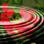 Kebenaran Nabi dalam Air Zamzam