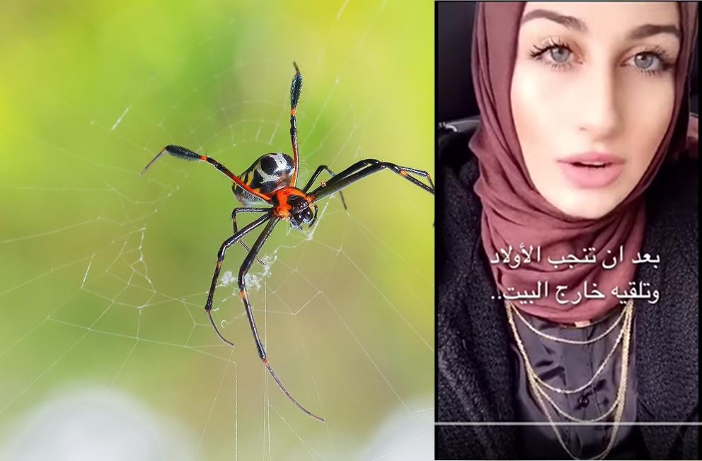 (Video) Gadis Cantik Ini Terangkan Kemukjizatan Al-Quran Tentang Laba-laba