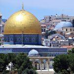 Mukjizat dari Palestina, Perjuangan yang Tak Pernah Mati