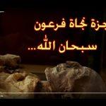 (video) Ilmuwan Prancis Temukan Kebenaran Al-Quran dalam Mumi Firaun